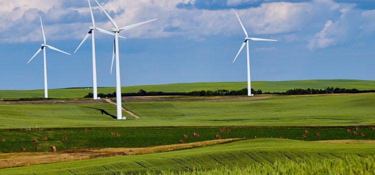 Nachhaltigkeit und Umweltschutz in der Lehre – glaubwürdig Inhalte vermitteln